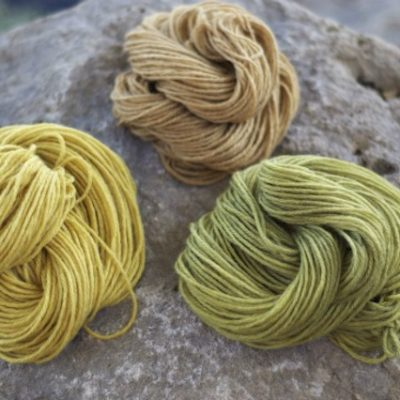 wool yarn naturally dyed with acorns
